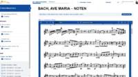 """Meisterkurs """"Geige lernen mit Erfolg als Erwachsener"""""""