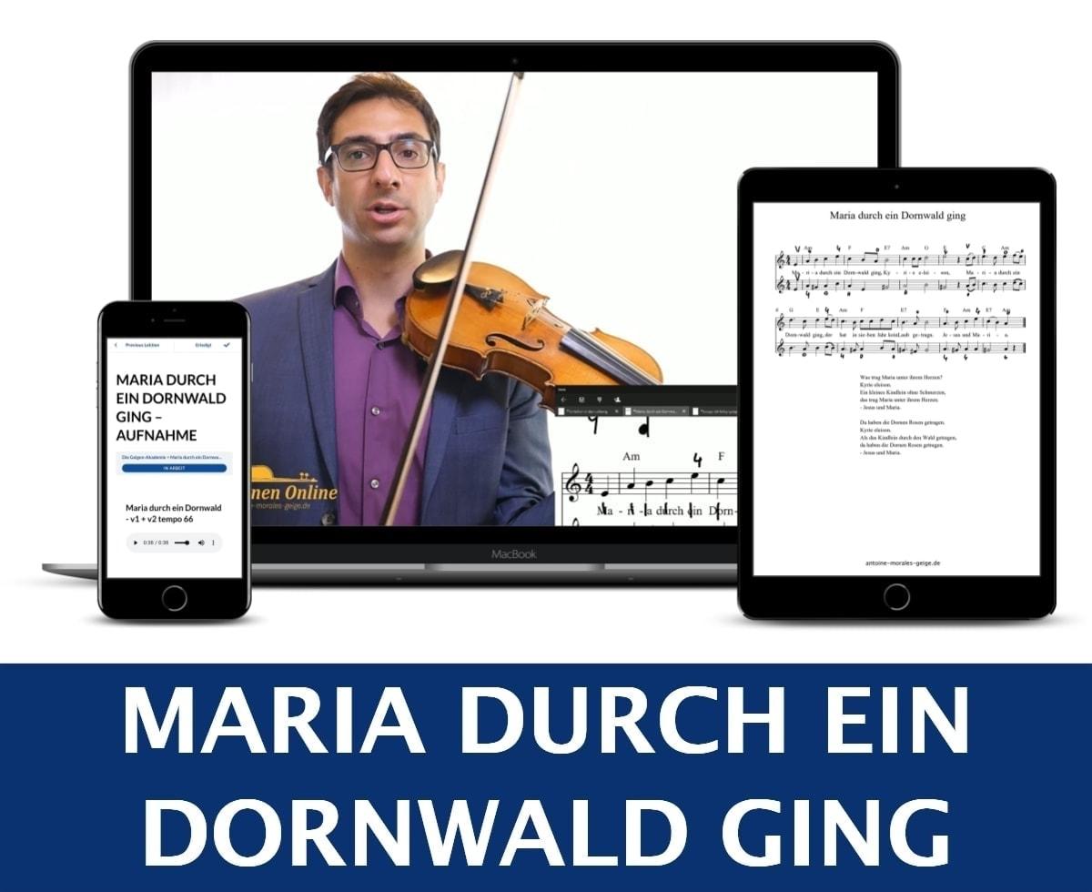 Geigenakademie Geige online lernen