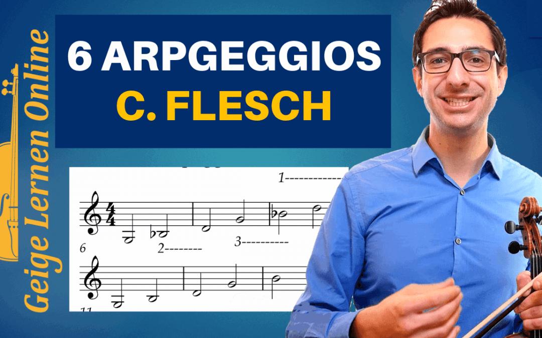 6 Übungen von Carl Flesch, für eine sichere Intonation auf der Geige