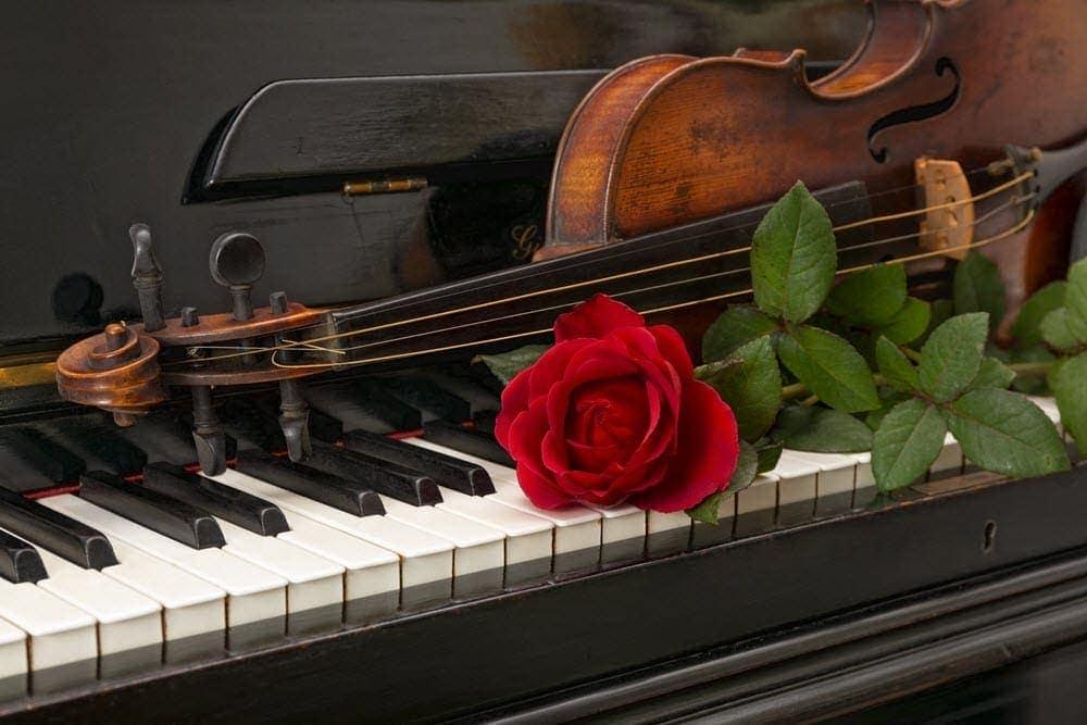 geige-klavier-stimmen2