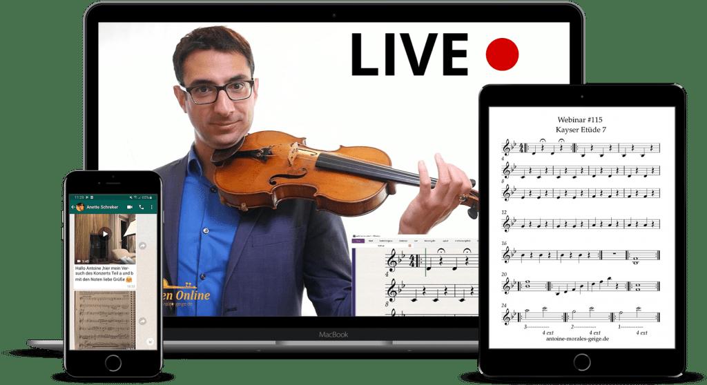 Online-Kurse Geige