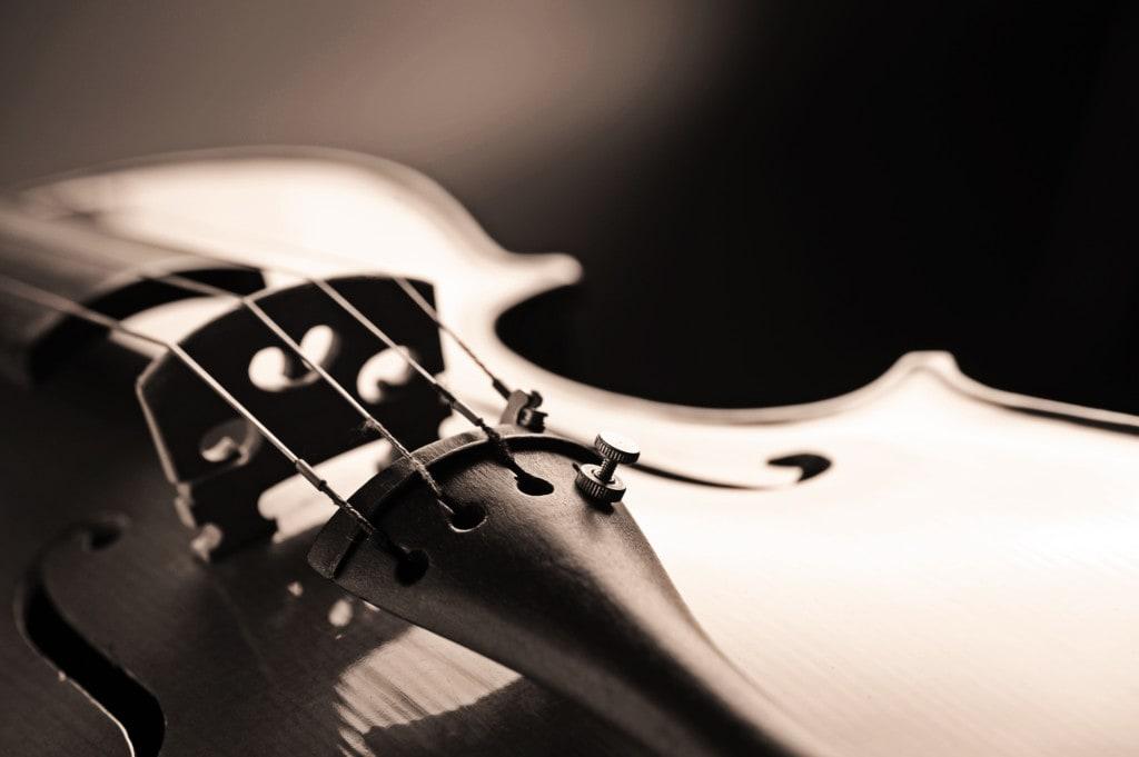 Geige kaufen vergleich
