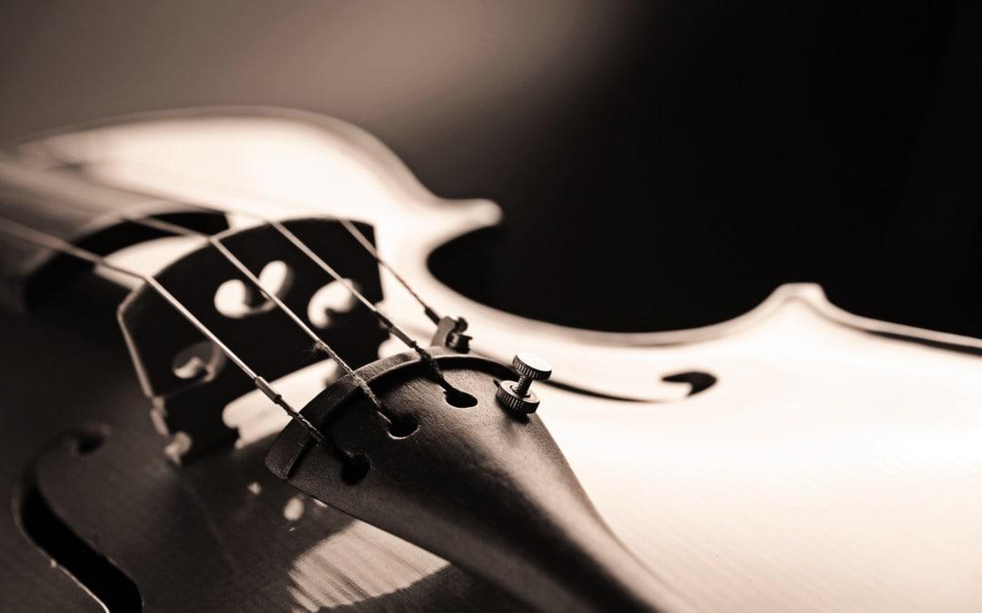 Geige kaufen: Die beste Geige und Adresse (Vergleich)