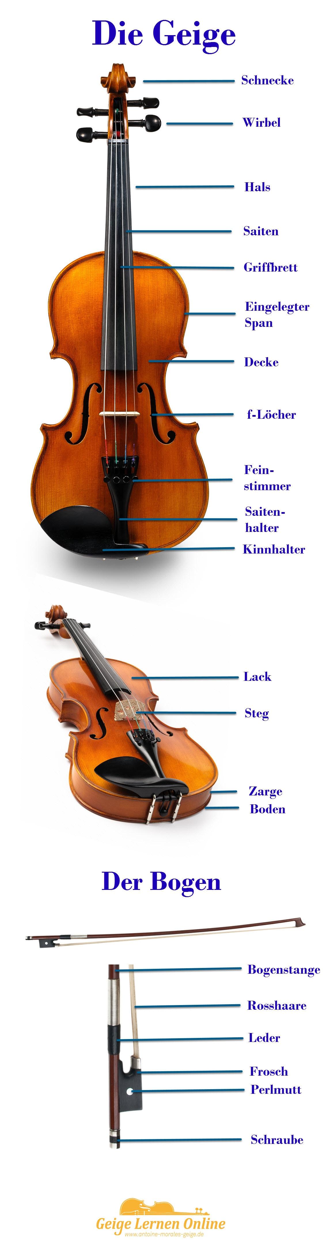 geige-violine-bogen-858px
